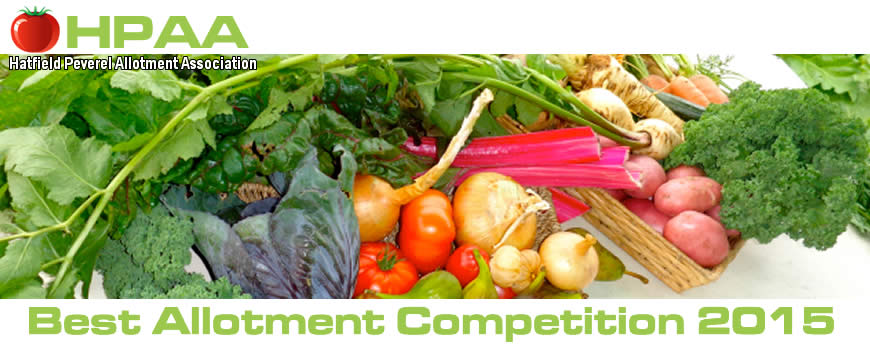 Best Allotment Competition 2015! - 4th July 2015 Starting at 11.30am