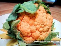 Sunset F1 Cauliflower