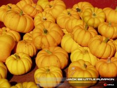Jack Be Little Pumpkin